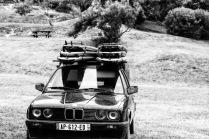 Dream car?